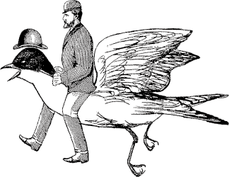 Man on Bird